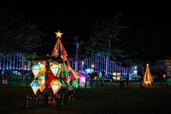 Christmas Home Displays