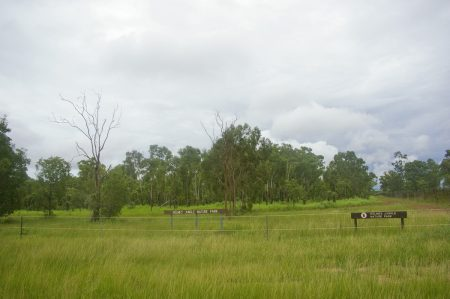 Holmes Jungle Nature Park Trails, a beautiful Top End monsoonal rainforest