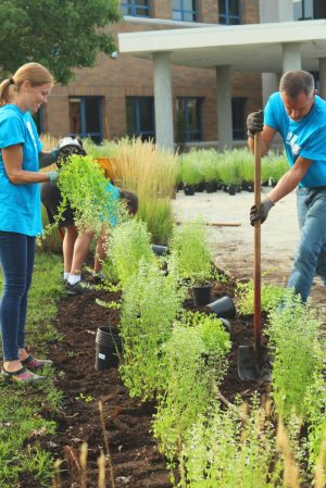 Volunteer work and experience in Student Ambassadors Program